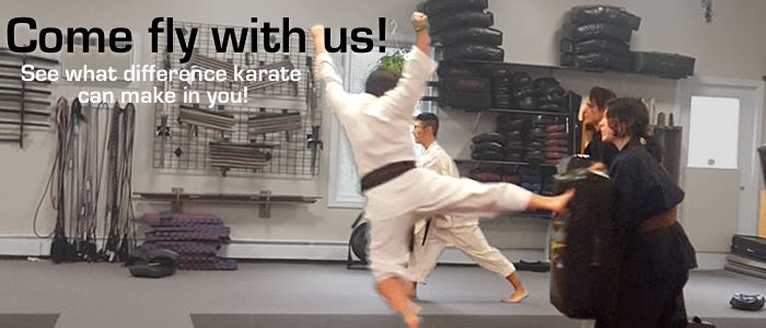 Come fly with us! See what a difference karate can make in you.